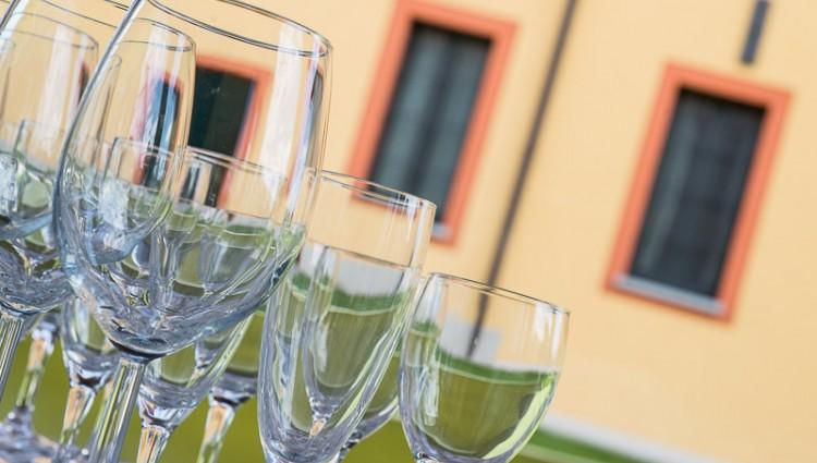Vine & food esperience in Ticino Park